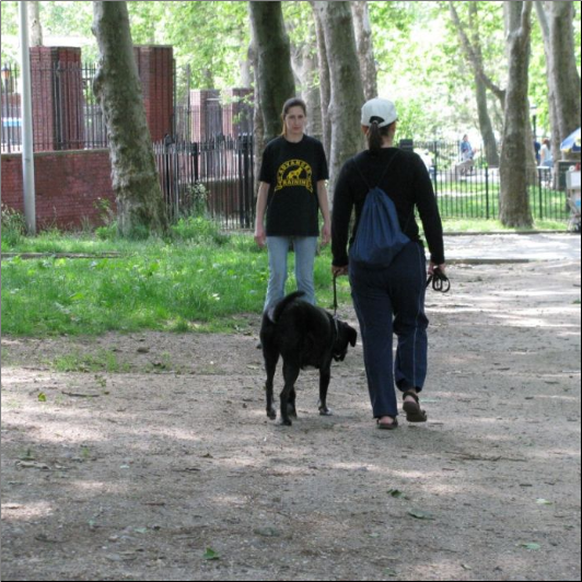 Dog Training Staten Island
