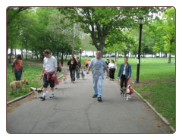 Astoria Queens Dog Training