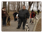 Free Dog Training Camp - Flushing- Queens