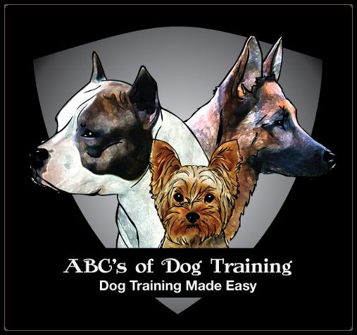 Dog Training Woodbury Long Island