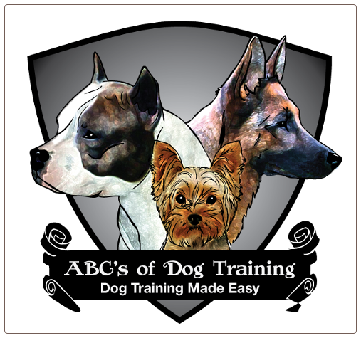 Dog Training Astoria Ny